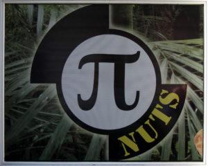 pi-nuts_logo